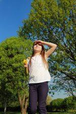 Картинки дерево береза для детей – фотографии и картинки береза, скачать изображение на Depositphotos®