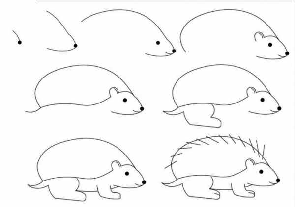 Как нарисовать мордочку ежика на лице