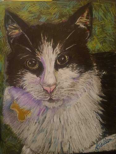 9a57fa499c36 Картинка котенок и кошка для детей – 61 карточка в коллекции ...