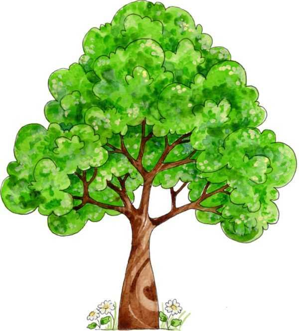 Сказочное дерево рисунок – Картинки сказочное дерево (20 ...